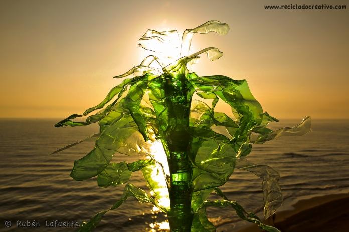 Ruben Lafuente Reciclado Creativo fotos concurso Upcycling reciclaje